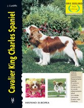 Cavalier King Charles Spaniel (Excellence-Raza especial)